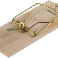 uploads mouse trap mouse trap PNG10 10