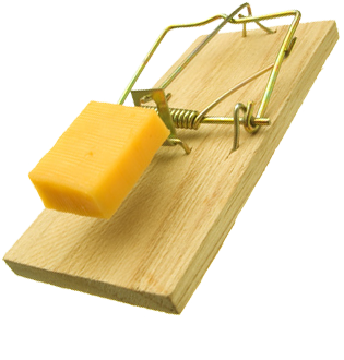 uploads mouse trap mouse trap PNG14 3