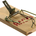 uploads mouse trap mouse trap PNG16 21