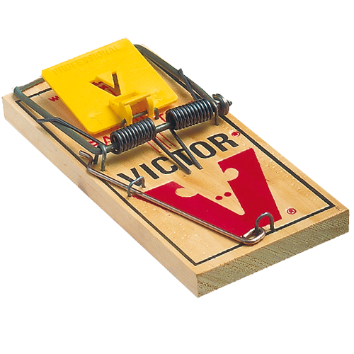 uploads mouse trap mouse trap PNG17 43
