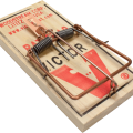 uploads mouse trap mouse trap PNG2 13