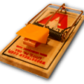 uploads mouse trap mouse trap PNG20 18
