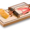 uploads mouse trap mouse trap PNG30 20