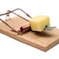 uploads mouse trap mouse trap PNG34 22