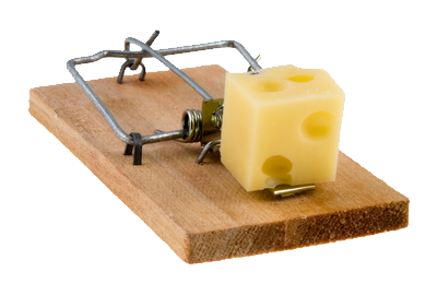 uploads mouse trap mouse trap PNG35 65
