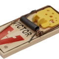 uploads mouse trap mouse trap PNG5 9