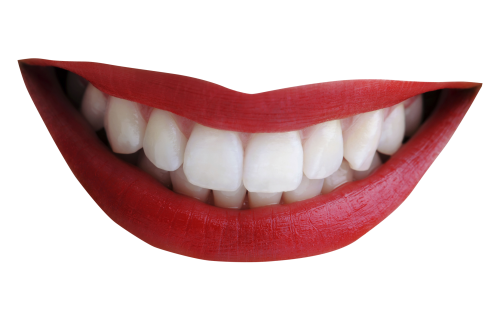 uploads mouth smile mouth smile PNG16 5
