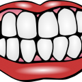 uploads mouth smile mouth smile PNG34 11