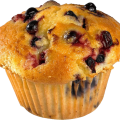 uploads muffin muffin PNG2 11