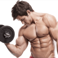 uploads muscle muscle PNG42 14