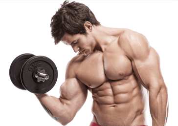 uploads muscle muscle PNG42 7