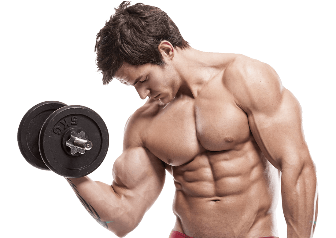uploads muscle muscle PNG42 5