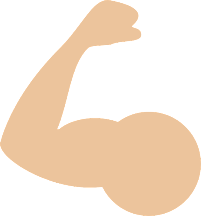 uploads muscle muscle PNG47 4