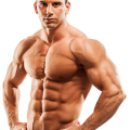 uploads muscle muscle PNG53 18