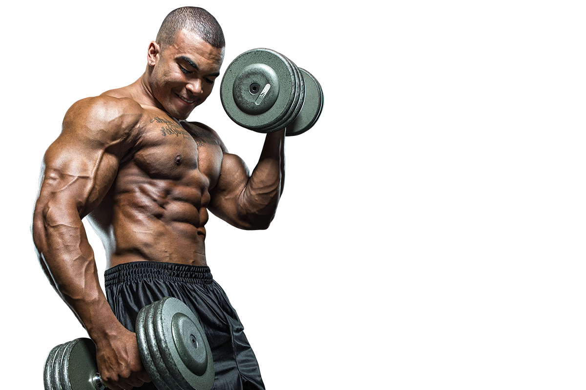 uploads muscle muscle PNG58 4