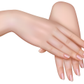 uploads nails nails PNG35 23