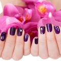 uploads nails nails PNG86 7