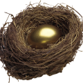 uploads nest nest PNG19 9