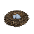 uploads nest nest PNG23 16