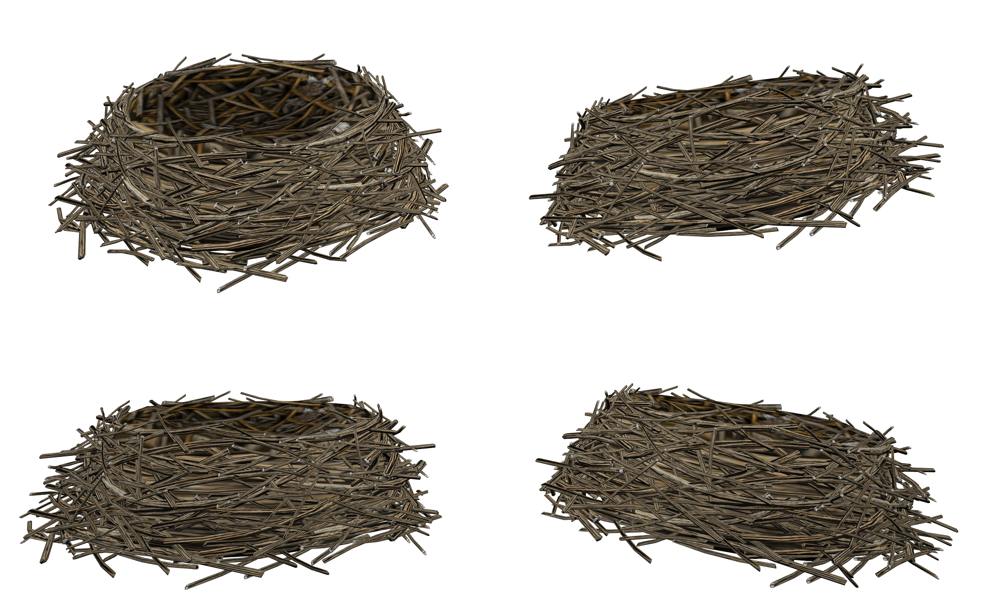 uploads nest nest PNG24 64