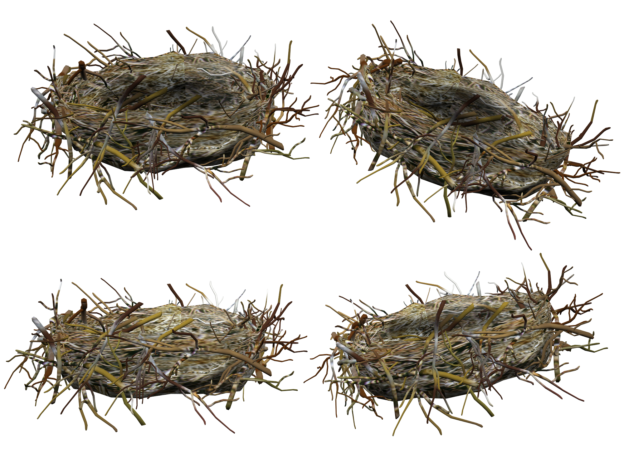 uploads nest nest PNG26 3