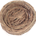 uploads nest nest PNG27 65