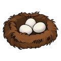 uploads nest nest PNG33 20