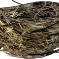 uploads nest nest PNG35 25