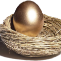 uploads nest nest PNG51 13