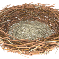 uploads nest nest PNG58 7