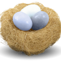uploads nest nest PNG61 17