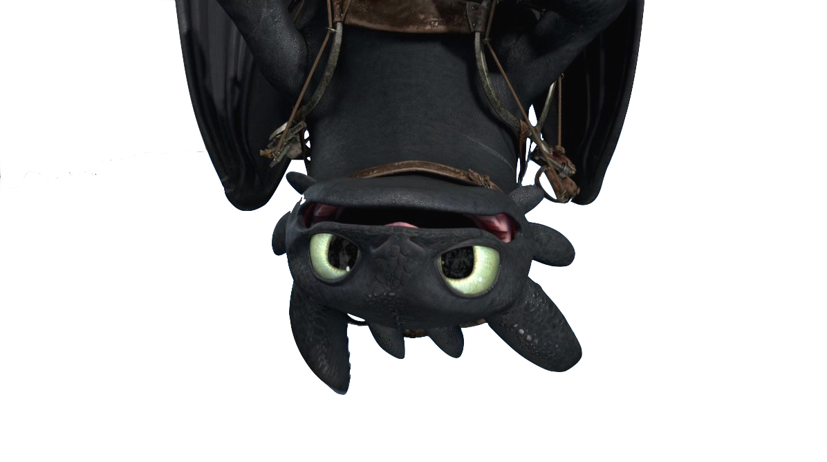 uploads night fury night fury PNG74 44