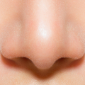 uploads nose nose PNG18 63