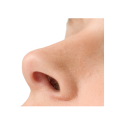 uploads nose nose PNG21 64
