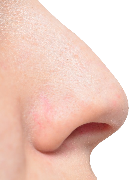 uploads nose nose PNG22 4