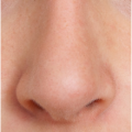 uploads nose nose PNG26 47