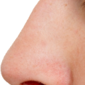uploads nose nose PNG27 59