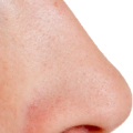 uploads nose nose PNG28 63