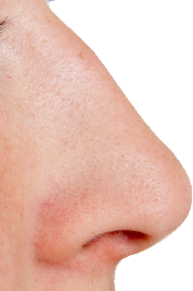 uploads nose nose PNG28 64