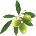uploads olives olives PNG14269 12