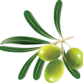 uploads olives olives PNG14271 8