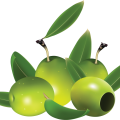 uploads olives olives PNG14272 10