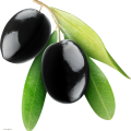uploads olives olives PNG14275 17