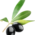 uploads olives olives PNG14276 21