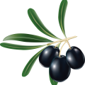 uploads olives olives PNG14280 25
