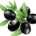 uploads olives olives PNG14281 16