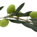 uploads olives olives PNG14288 11