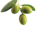 uploads olives olives PNG14293 16