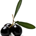 uploads olives olives PNG14297 11
