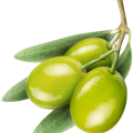 uploads olives olives PNG14299 22